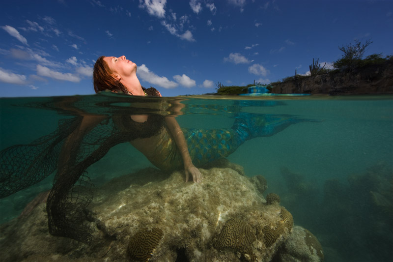 Mermaid in Slagbaai National Park; Bonaire, Netherland Antilles