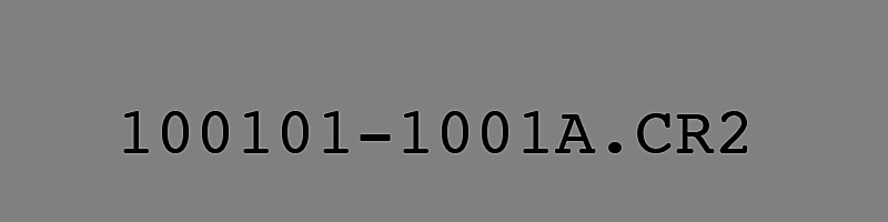 100101-1001; A Beautiful Number