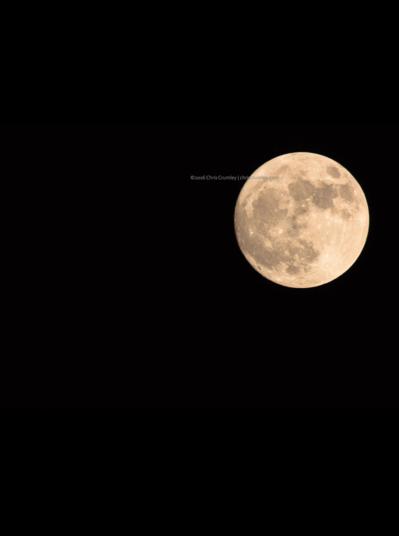Screen Shot 2016-11-14 at 8.54.41 PM.png