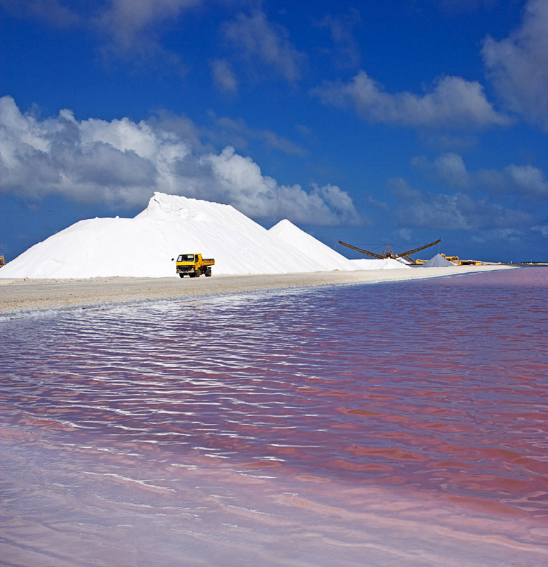 Cargill, Incorporated; Dry Solar Salt; Bonaire, N.A.
