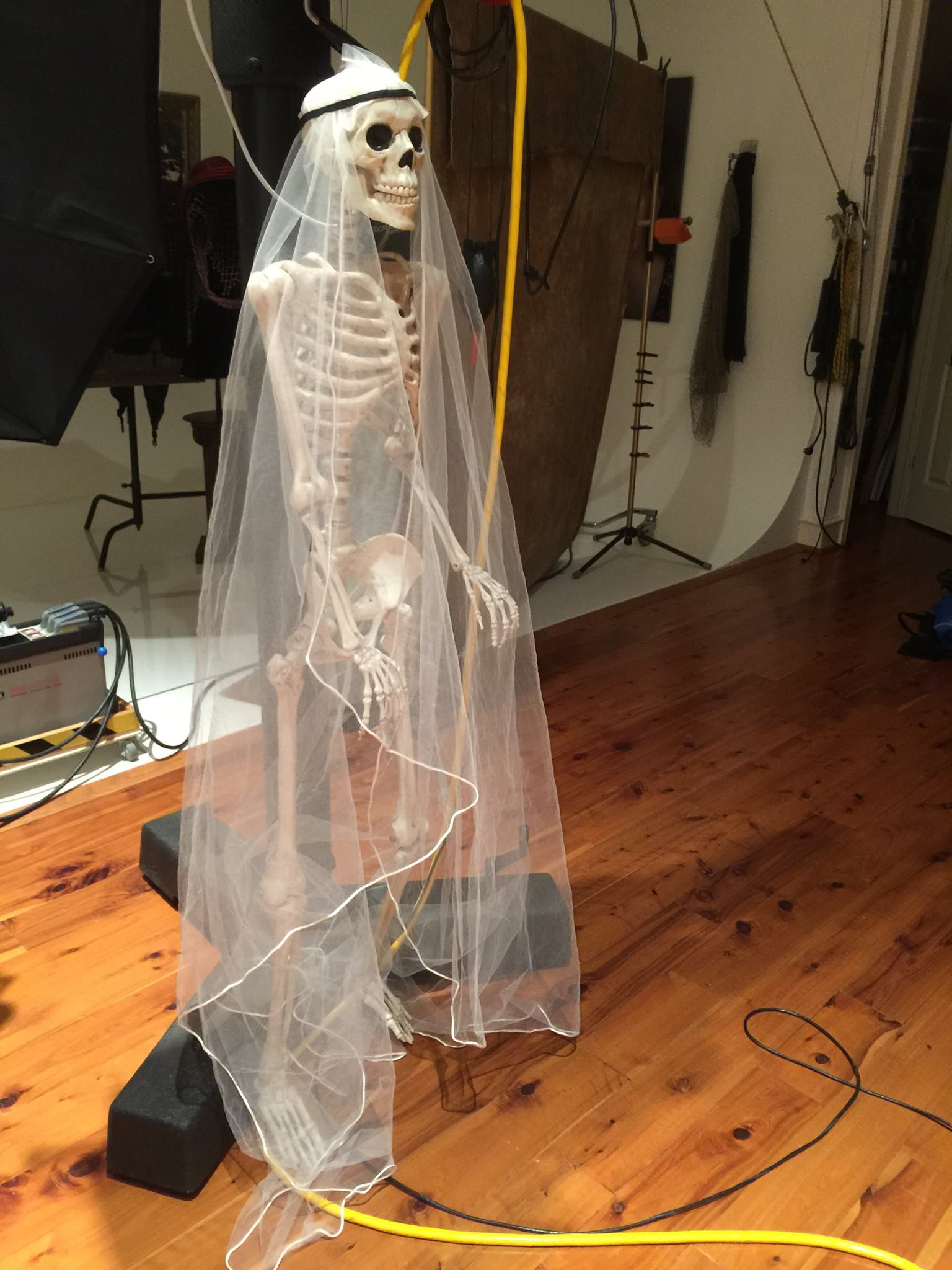 Veiled Skeleton