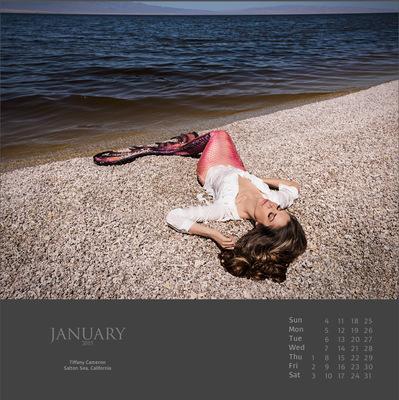 Calendar2014MermaidJan15.jpg